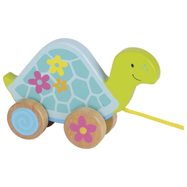 Ziehtier Schildkröte Susibelle